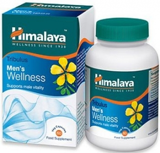 Himalaya Herbals Wellness Tribulus 60 tablet